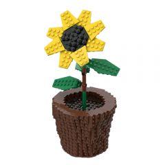 MOC Sunflower